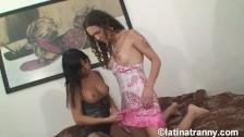 Nikki Montero Fucking and CUMMING on Ludmilas mouth