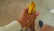 I jerk off my dog I jerked off my dick with banana peel rionia