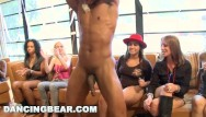 Gotgayporn strippers Dancingbear - line up for some male stripper cock, ladies