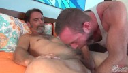 Gay statistics Hot silver daddy hunks have a raw fuck session.