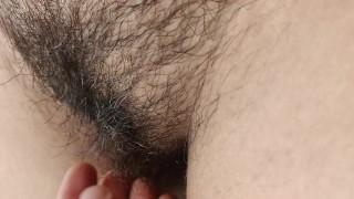Hairy Pusie